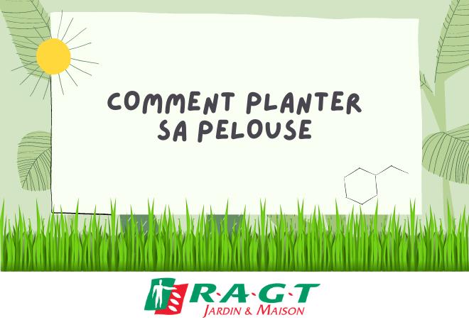 comment-planter-sa-pelouse-ragtjardinetmaison